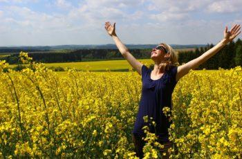 a gratidão transforma